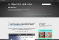 Les Tribulations d'une Famille Nombreuse