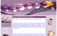 Le Blog de Sénibeauté